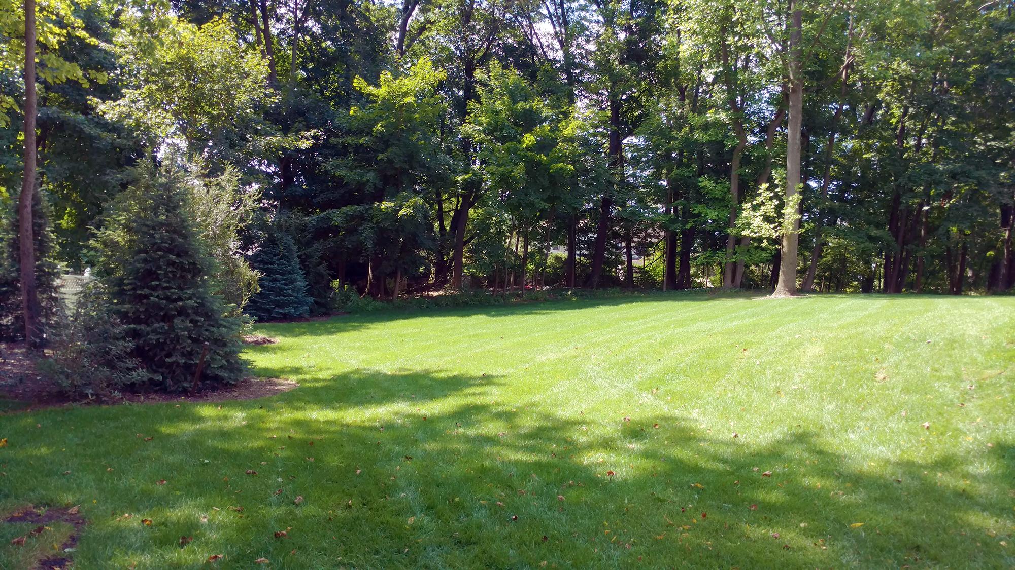 Backyard View green park homes